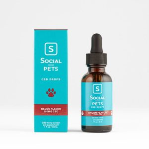 Social CBD Tincture Oil for Pets - 250mg - Bacon